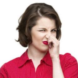 Живущие на поверхности языка бактерии Solobacterium moorei являются основной причиной халитоза – дурного запаха изо рта